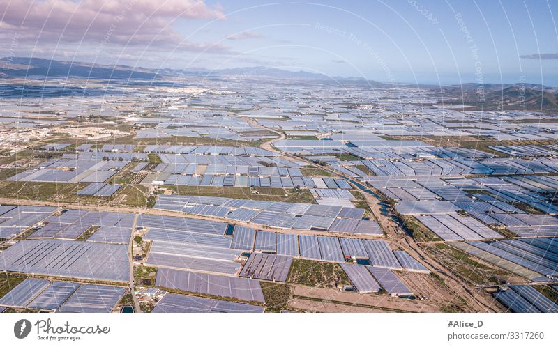 Sea of plastic greenhouses landscape in southern Spain Nutrition Industry Environment Nature Landscape Plant Animal Drought Garden Field Exceptional Gigantic
