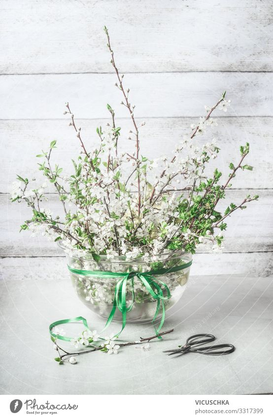 Spring decoration. Cherry blossoms twigs bundles in vase Style Design Living or residing Plant Leaf Blossom Decoration Bouquet Bow bunch cherry Vase April