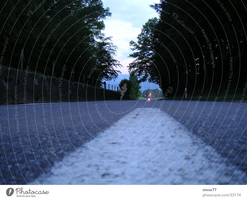 street Night Transport Street Roadway Forest car lane Car-free