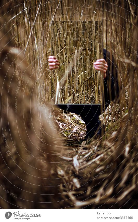 man behind the mirror Human being Masculine Hand Fingers 1 Mirror Crouch Sit Stop To hold on Common Reed Hide Camouflage Mirror image Lanes & trails