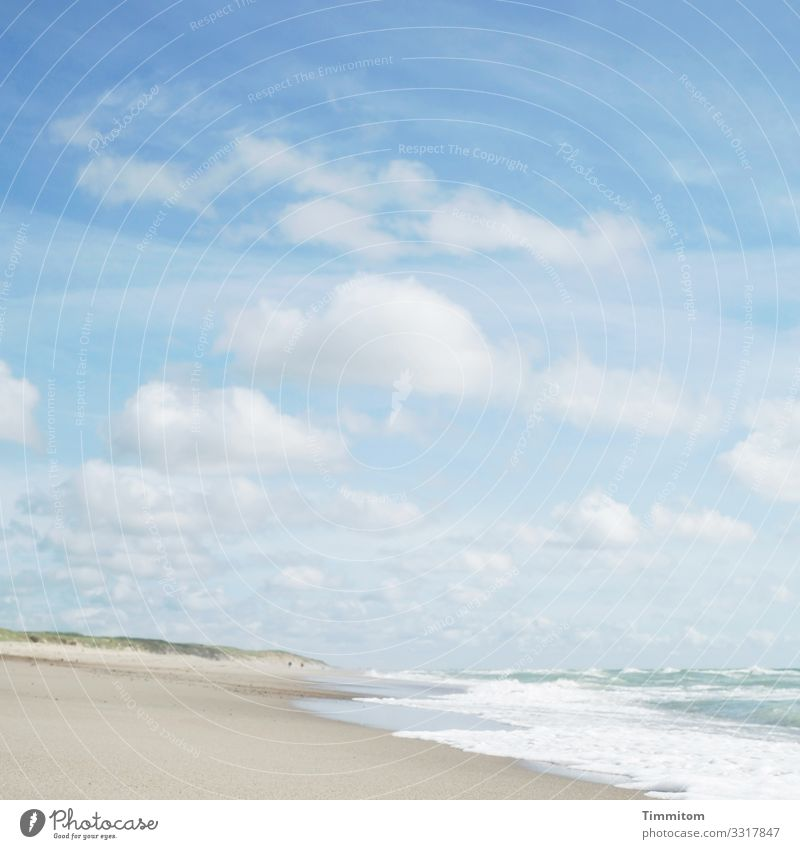A cheerful day Vacation & Travel Environment Nature Landscape Elements Sand Air Water Sky Clouds Beautiful weather Beach North Sea Beach dune Denmark Esthetic