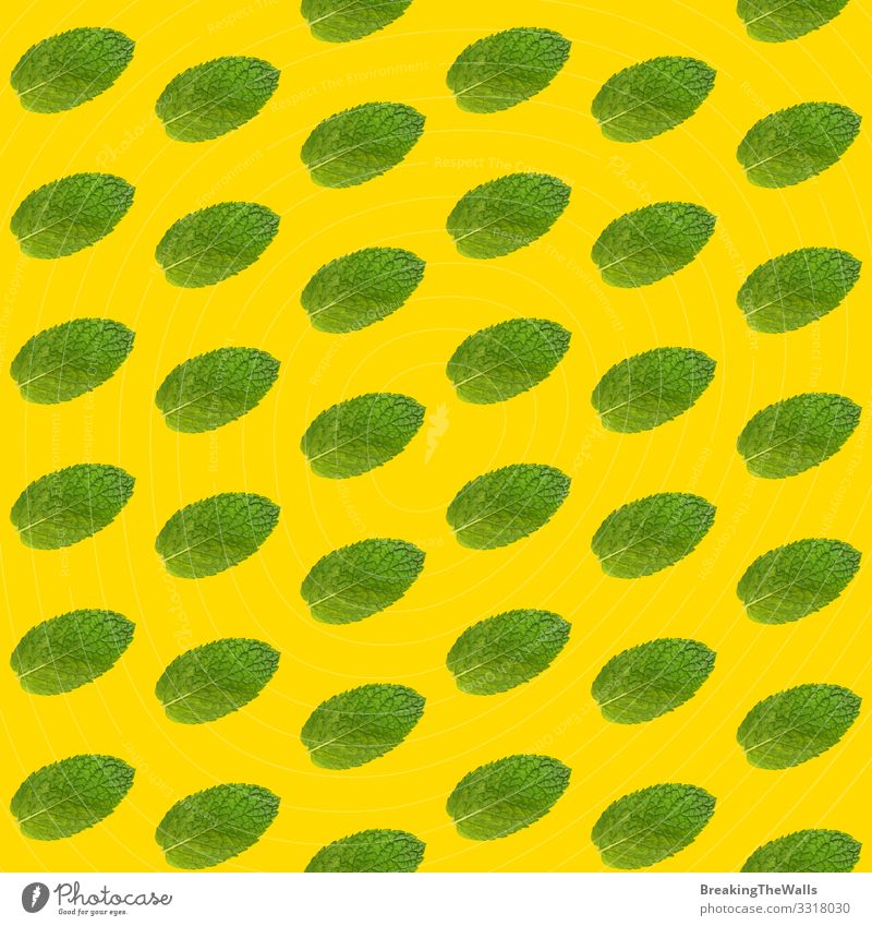 Seamless pattern of mint leaves on yellow Food Herbs and spices Nutrition Eating Organic produce Vegetarian diet Design Alternative medicine Healthy Eating Leaf