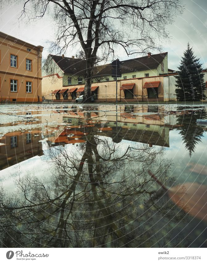 Double play Water Clouds Tree torgau Saxony Germany Small Town Downtown Populated House (Residential Structure) Building Wall (barrier) Wall (building) Window