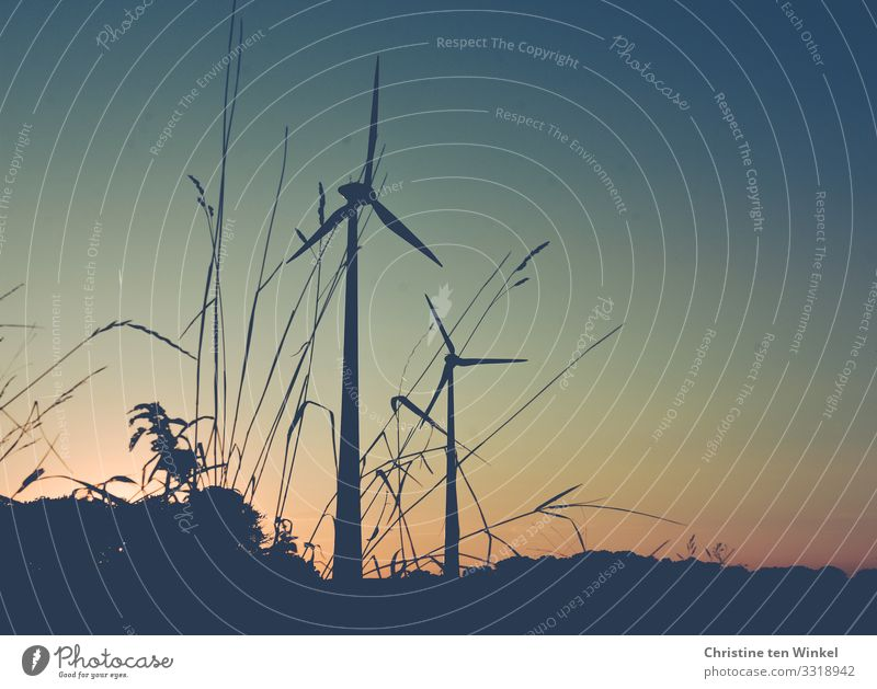 Wind turbines at dusk Technology Advancement Future Energy industry Renewable energy Wind energy plant Environment Nature Cloudless sky Sunrise Sunset Sunlight