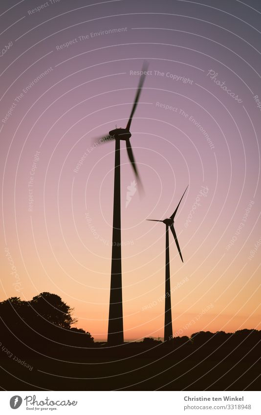 Wind turbines in the evening light Technology Advancement Future Energy industry Renewable energy Wind energy plant Sky Cloudless sky Sunrise Sunset Tree