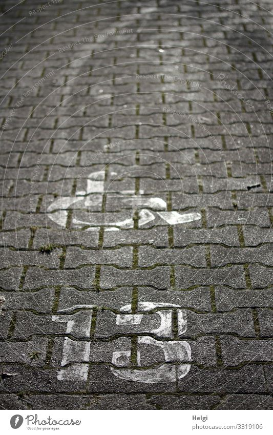 Wheelchair and number 13 on cobblestones Parking lot Tracks Stone Sign Digits and numbers Communicate Simple Uniqueness Gray White Safety Humanity Help