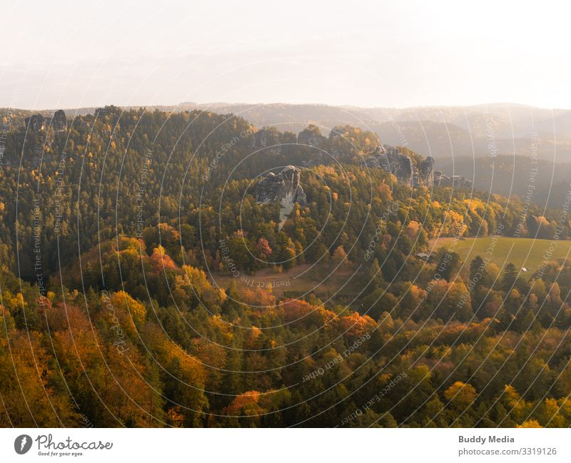Saxon Switzerland in the morning glow Tourism Adventure Far-off places Expedition Mountain Hiking Environment Nature Landscape Sky Horizon Sun Summer Autumn