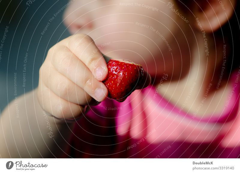 Child holds strawberry in his hand Food fruit Strawberry Human being girl Boy (child) Fingers 1 1 - 3 years Toddler Touch To hold on Fresh Healthy Delicious