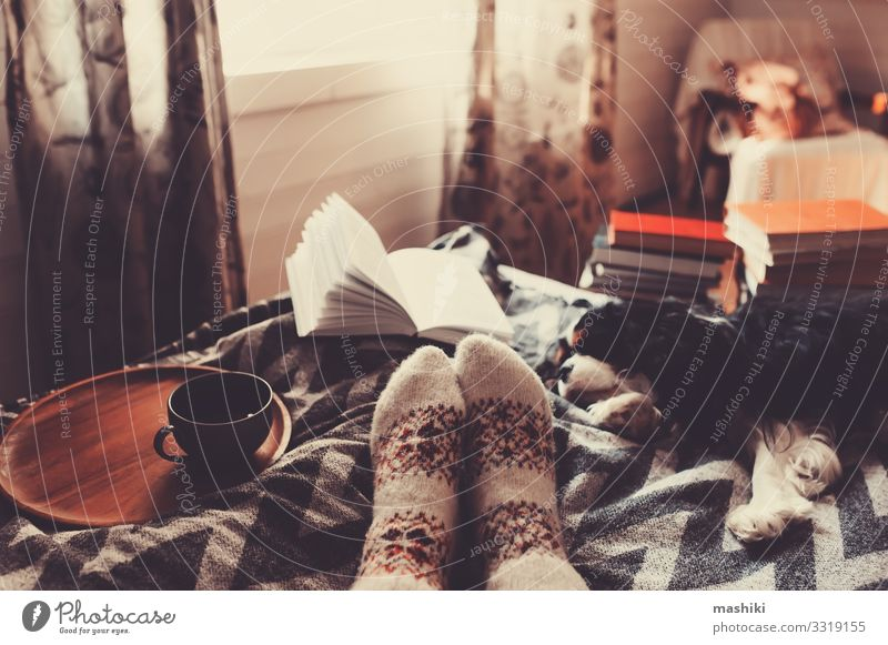 cozy winter day at home with cup of hot tea Tea Lifestyle Relaxation Leisure and hobbies Reading Winter House (Residential Structure) Woman Adults Friendship