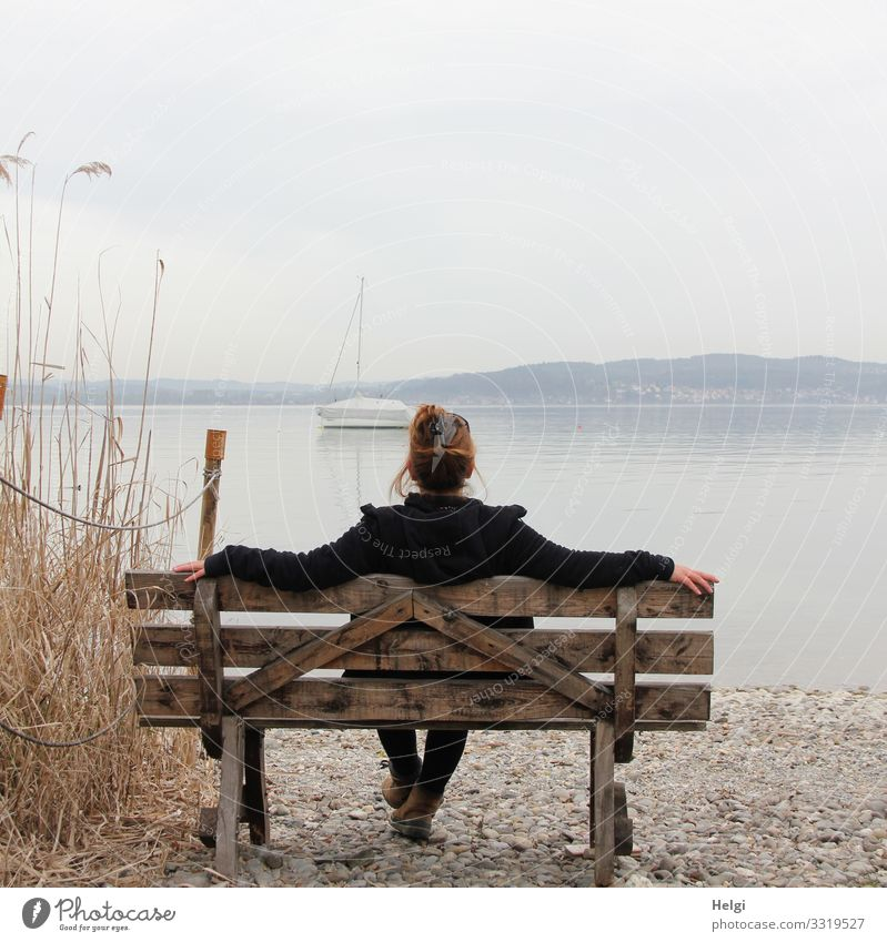 Rear view of a woman sitting on a wooden bench and looking at a lake Human being Feminine Woman Adults 1 45 - 60 years Environment Nature Landscape Plant Water