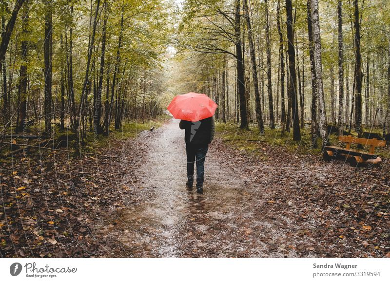 I'm singin' in the rain Masculine 1 Human being Environment Nature Landscape Autumn Bad weather Rain Tree Forest Deserted Lanes & trails Jeans Umbrella Going