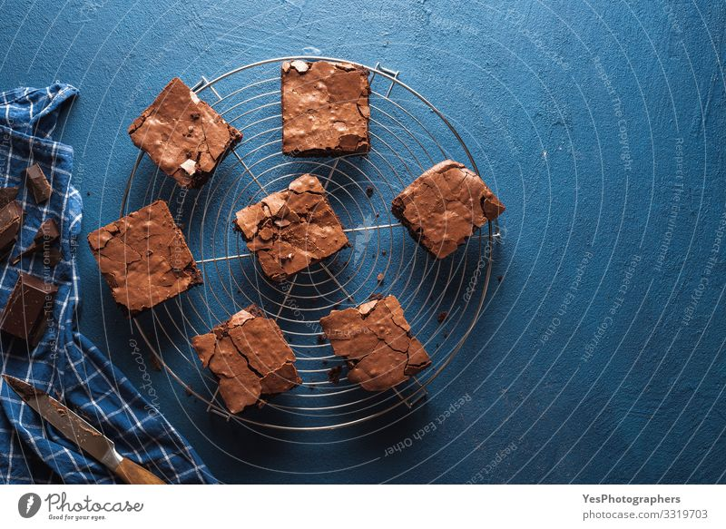 Brownies cake squares on cooling rack. Chocolate fudge brownies Cake Dessert Candy Delicious Sweet Blue above view american dessert Baked goods Blue background