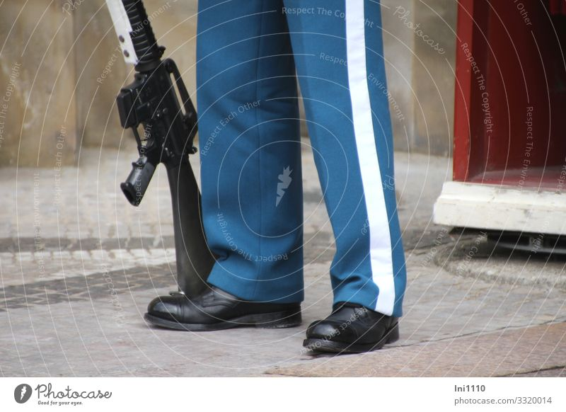 on duty Profession Team Masculine Man Adults Legs 1 Human being Copenhagen Denmark Tourist Attraction Monument Blue Red White Protection Rifle Weapon Uniform