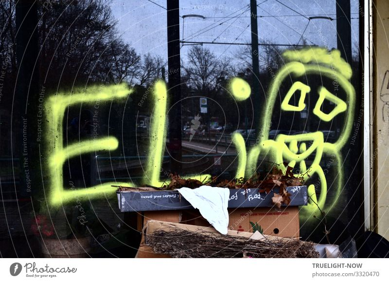 Blue White Dark Black Lifestyle Graffiti Yellow Environment Playing Brown Design Leisure and hobbies Wild Dirty Youth culture Threat