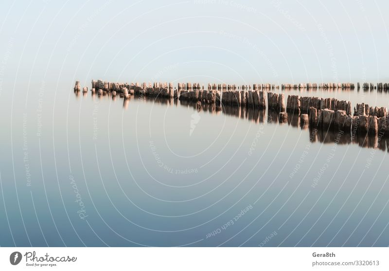 wooden columns in a calm surface of the water Summer Ocean Environment Nature Autumn Climate Wood Natural Serene Colour background Body of water Column heat