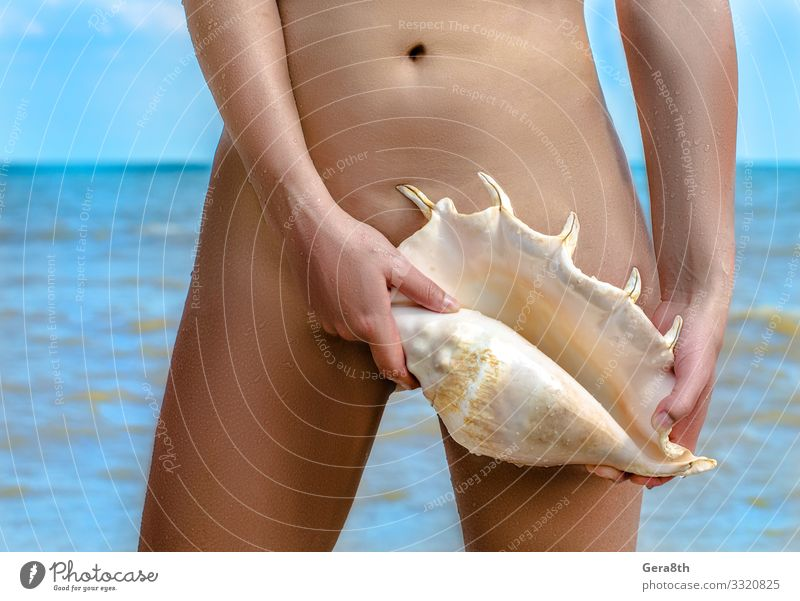female body with a large seashell against the blue sea Body Skin Summer Beach Ocean Waves Financial institution Woman Adults Hand Fingers Sky Coast Souvenir