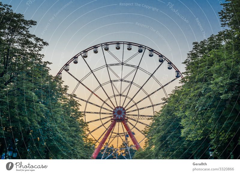 ferris wheel in the park against the blue sky behind trees Joy Leisure and hobbies Vacation & Travel Entertainment Sky Tree Park Taxi Metal Movement Blue Yellow