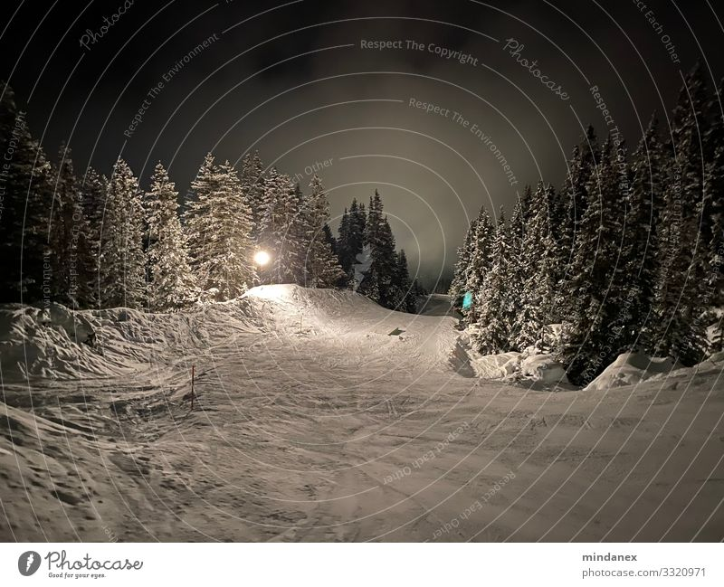Night slope Winter sports Skiing Skis Snowboard Ski run Night sky Alps Mountain Gray Black White Vacation & Travel Tourism Colour photo Exterior shot