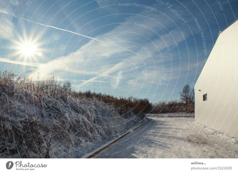 Sunny winter landscape with house wall Winter Beautiful weather Snow Bushes Building Wall (building) Street Cold Sunbeam Vapor trail Landscape
