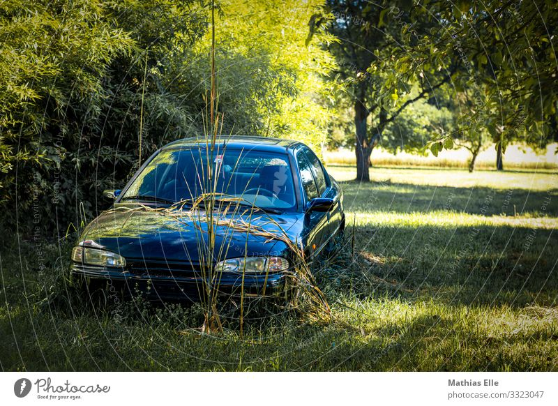Old car on a greenfield site Landscape Plant tree Grass Car Historic Broken Retro Trashy Variable Senior citizen Logistics old car Rust Spoiled Meadow Garden