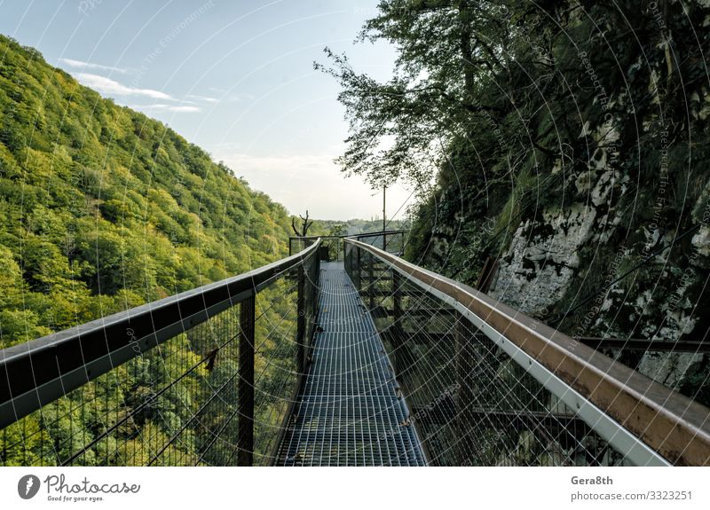 suspension metal bridge in canyon in Georgia in autumn Vacation & Travel Tourism Trip Mountain Nature Landscape Plant Sky Clouds Horizon Autumn Climate Warmth