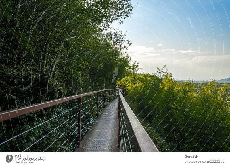 long suspension iron bridge in canyon in Georgia Vacation & Travel Tourism Trip Mountain Nature Landscape Plant Sky Clouds Horizon Autumn Climate Warmth Tree