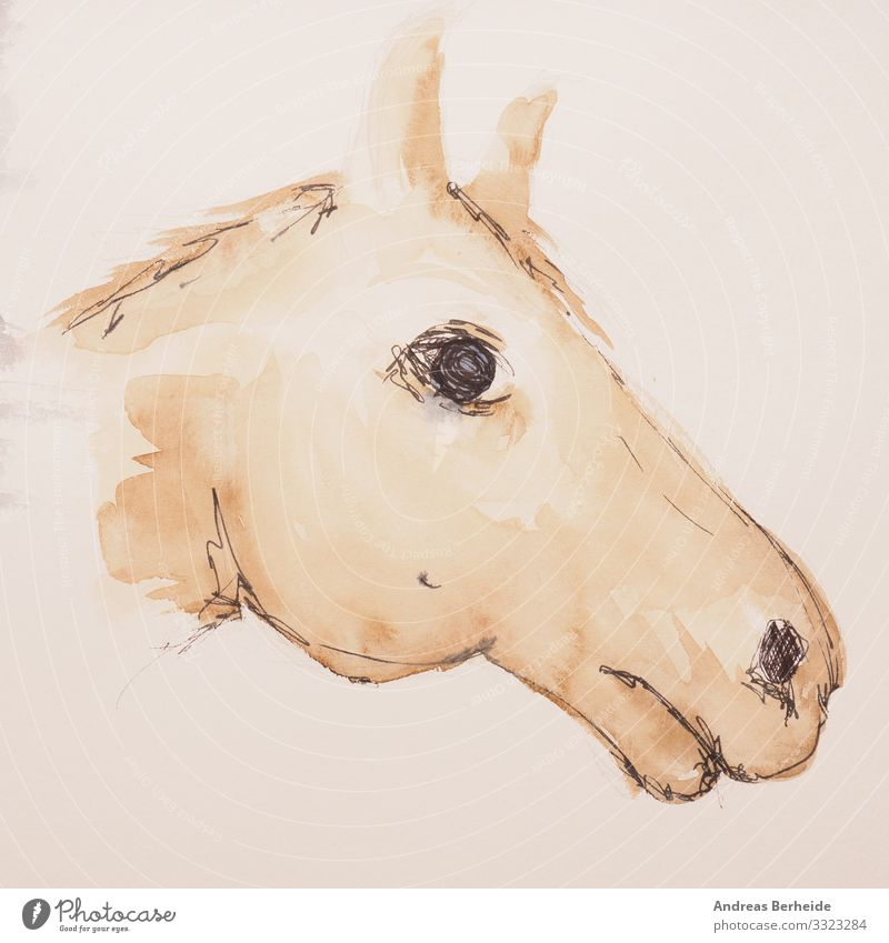 Watercolour painting Trakehner Portrait Leisure and hobbies Craft (trade) Pet Farm animal Horse Animal face 1 Paper Draw Creativity riding horse Living thing