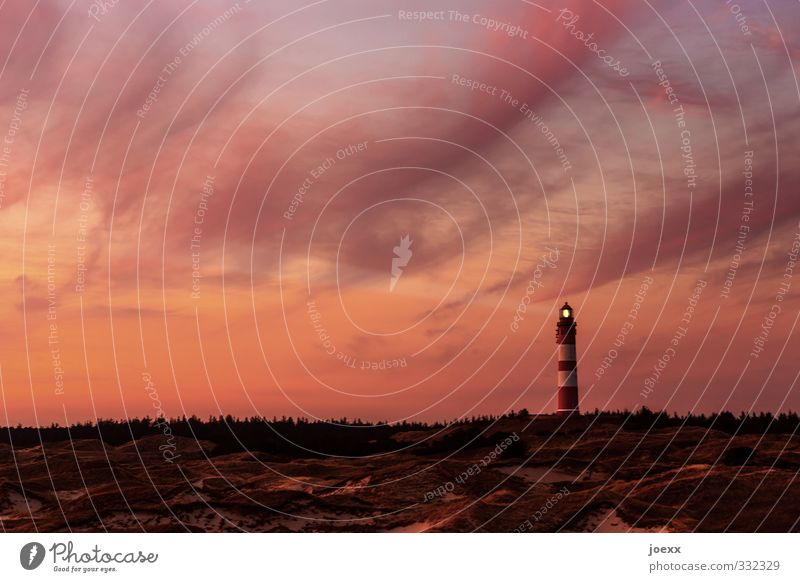 you and I Sky Clouds Horizon Summer Beautiful weather Forest Hill Island Amrum Lighthouse Brown Orange Black Calm Hope Idyll Vacation & Travel Colour photo