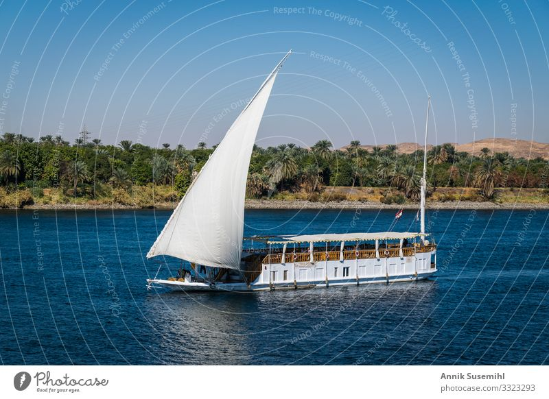 Traditional Dahabeya with white sail on the Nile in Egypt Leisure and hobbies Vacation & Travel Tourism Cruise Environment Nature Landscape Water Cloudless sky