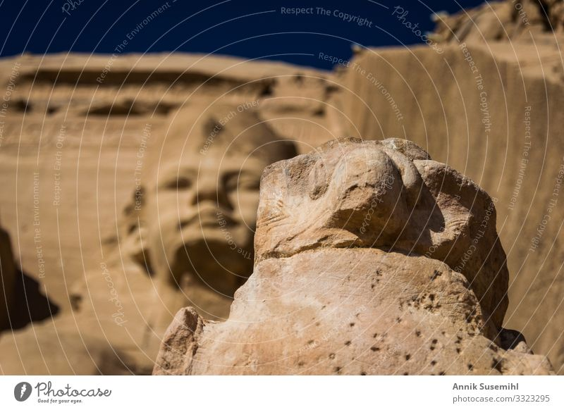 Statue of Horus in front of the temple of Abu Simbel, Egypt Art Work of art Sculpture Architecture Culture Beautiful weather Desert Tourist Attraction Temple