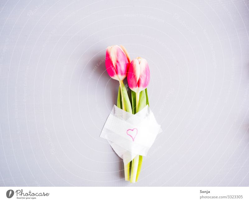 Two pink tulips with a patch and a heart Valentine's Day Mother's Day Wedding Birthday Flower Tulip Leaf Blossom Sign Heart Blossoming Fragrance Exceptional