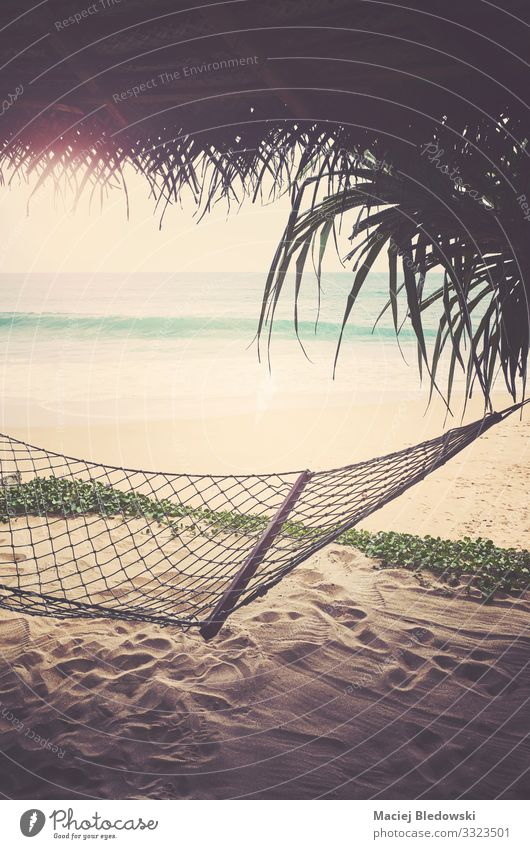 Tropical beach with hammock, retro color toning applied. Exotic Relaxation Vacation & Travel Tourism Freedom Summer Summer vacation Sun Sunbathing Beach Ocean