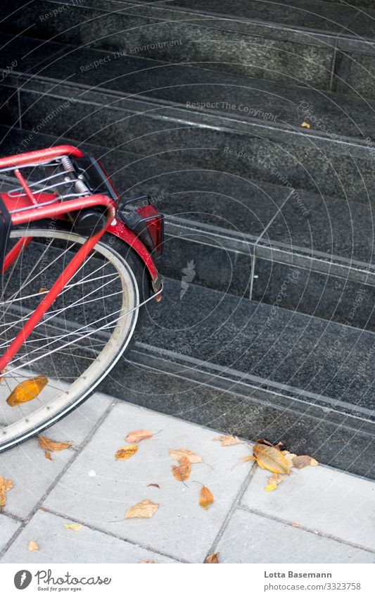 red bike Town Driving Thrifty Sustainability Bicycle Stairs Red Autumn Leaf Yellow Seasons Black Parking Movement Transport City life Street Sidewalk Nature