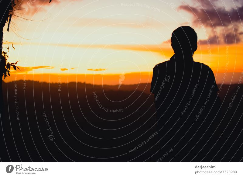 The main thing / see the sunset. The landscape is seen in many colors. A contour of a person is with his back to the picture. Joy Well-being Trip Masculine