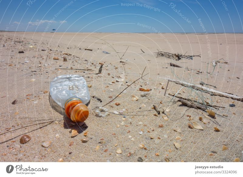 Plastic bottle on the beach sand. activism Awareness Beach Bottle Coast collect Education Environment Free Future micro plastic movement Nature Ocean Package