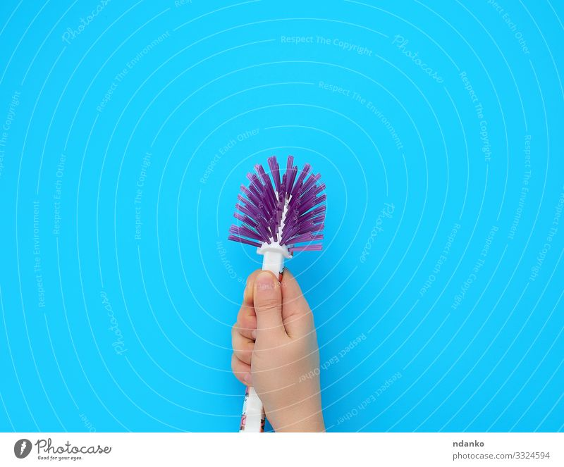 hand holds a plastic brush Work and employment Tool Human being Woman Adults Arm Hand Fingers Plastic Cleaning New Blue Protection background cleaner