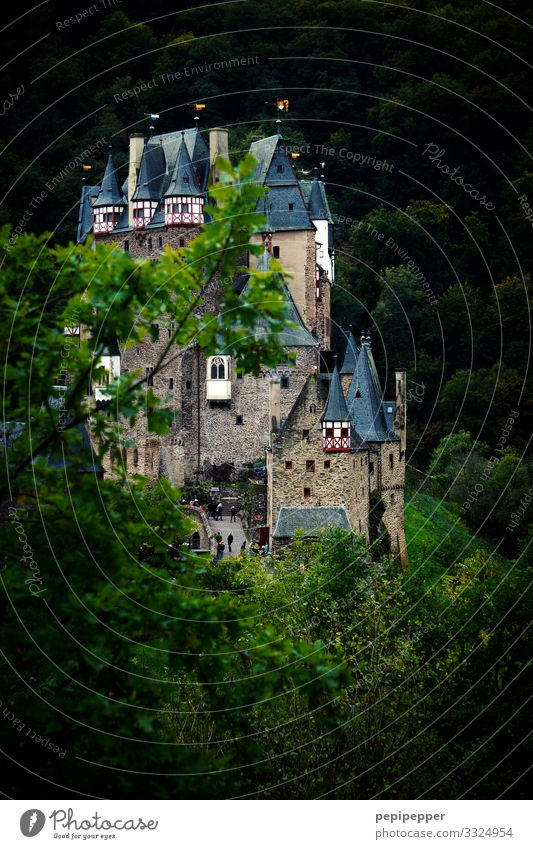 Castle Eltz Vacation & Travel Tourism Trip Adventure Far-off places Nature Tree Forest Hill Rock Manmade structures Wall (barrier) Wall (building) Facade