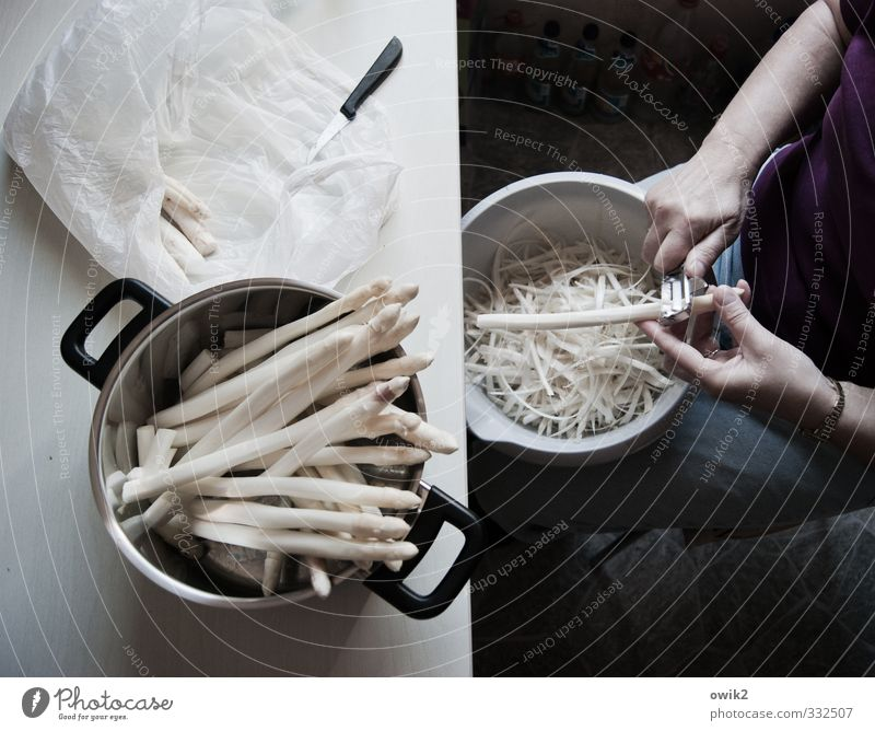 asparagus season Work and employment Housekeeping Preparation Molt Asparagus Human being Feminine Woman Adults Arm Hand Fingers 1 Delicious Anticipation Patient