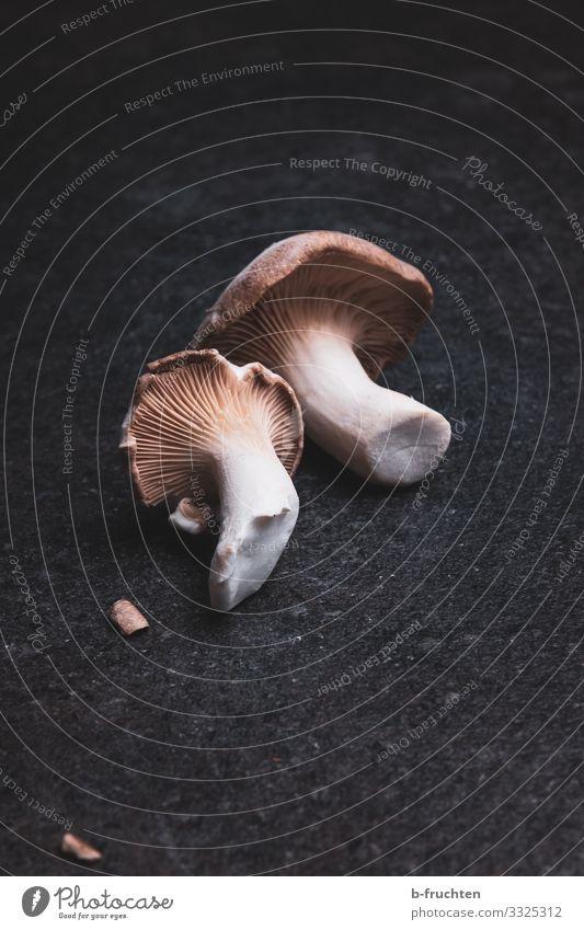 Herb seitlings - fresh mushrooms Food Vegetable Nutrition Organic produce Vegetarian diet Asian Food Healthy Eating To enjoy Fresh Mushroom Cooking