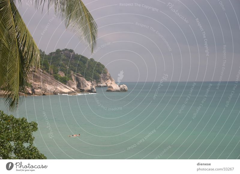 Nature Sun Ocean Beach Vacation & Travel Sand Rock Palm tree Thailand
