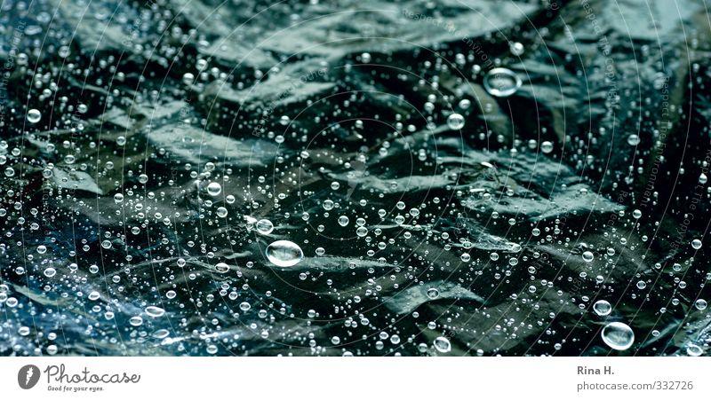Green Rain Glittering Wet Drops of water