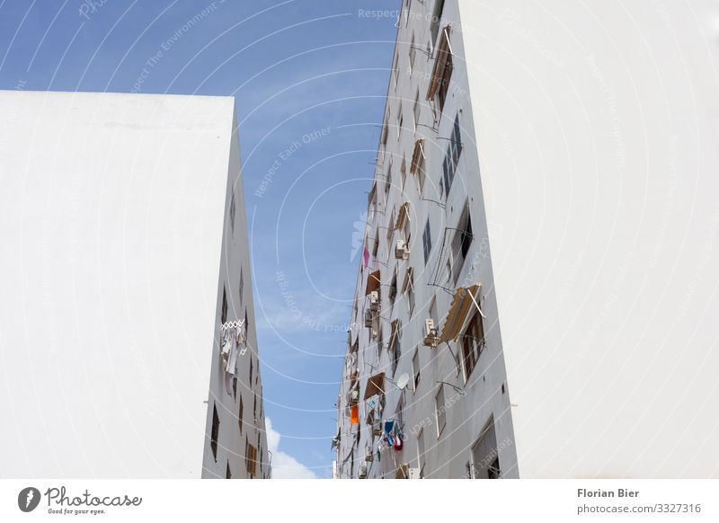 on good neighbourliness Ibiza city Spain Balearic Islands Town Populated House (Residential Structure) Wall (barrier) Wall (building) Window Living or residing