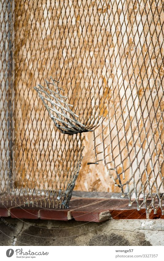 loophole Metal Brown Silver Safety Fence Wire netting Wire netting fence Broken up Sliced Hiding place Breach Old Metalware Colour photo Subdued colour