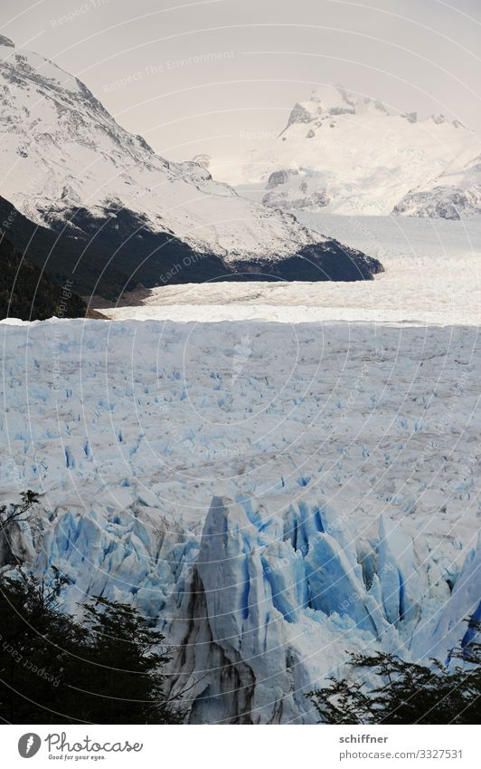 Argentine | Ice Age Environment Nature Landscape Sunlight Frost Snow Rock Mountain Peak Snowcapped peak Glacier Cold Iceberg Glacier ice Glacier tongue Cervasse