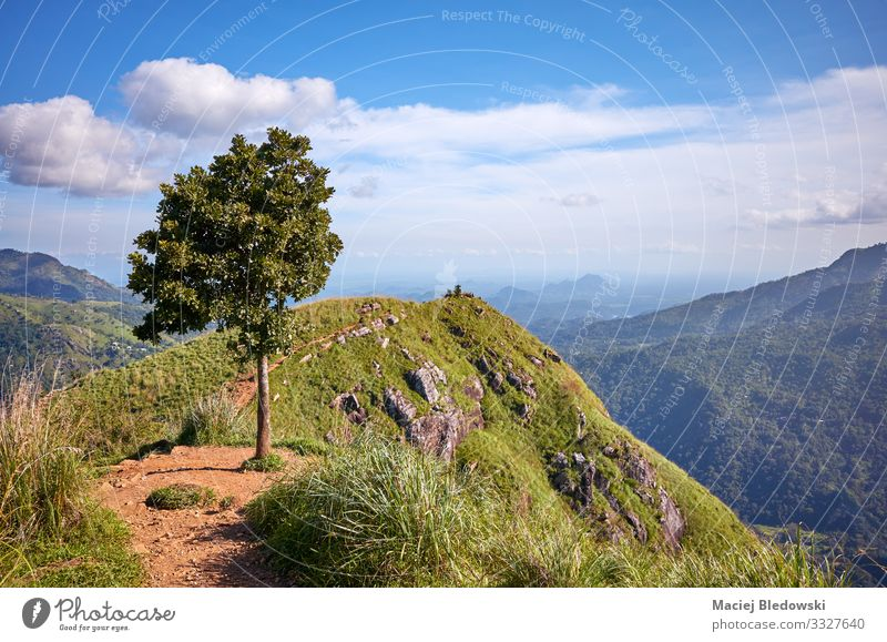Little Adams Peak on a sunny day, Sri Lanka. Vacation & Travel Tourism Trip Adventure Expedition Summer vacation Mountain Hiking Nature Landscape Sky Horizon