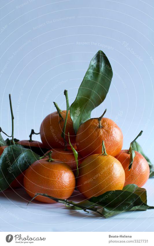 mandarins Food Fruit Orange Nutrition Organic produce Vegetarian diet Fasting Lifestyle Shopping Healthy Healthy Eating Work of art Nature Tree