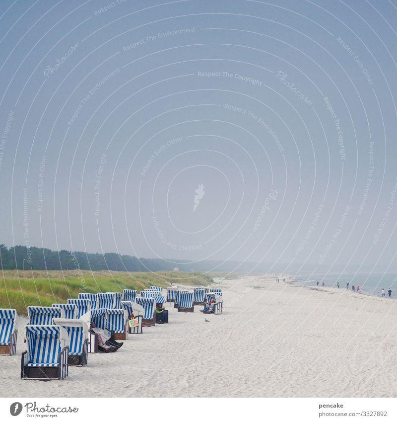 nachbarschaften | zu mir oder zu dir? Ostsee Darß Strandkorb Sand Nachbarschaften Urlaubsbekanntschaft Sommer