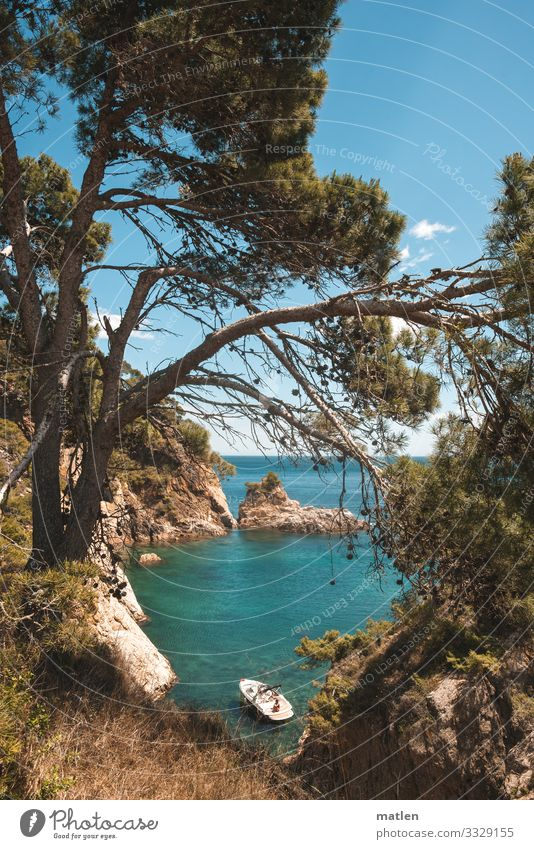 Dream bay for a rainy Sunday Nature Landscape Plant Sky Cloudless sky Horizon Spring Beautiful weather Tree Grass Rock Coast Bay Ocean Island Yacht Blue Brown