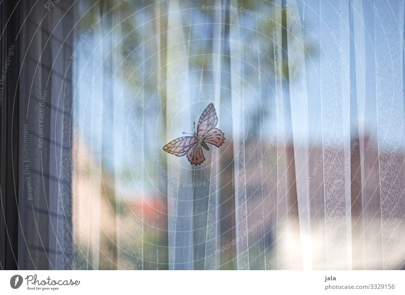 butterfly Flat (apartment) Sky Window Drape Butterfly Mysterious Safety Label Colour photo Exterior shot Deserted Day Light Shadow Reflection