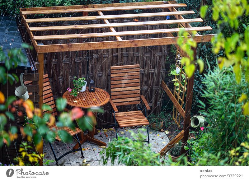 View of seat in the garden Living or residing Flat (apartment) House (Residential Structure) Garden Chair Table Seating pergola Summer Autumn Rain Plant Bushes